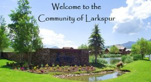 Larkspur-Picture-2-1