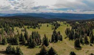 Arrowhead-scenery
